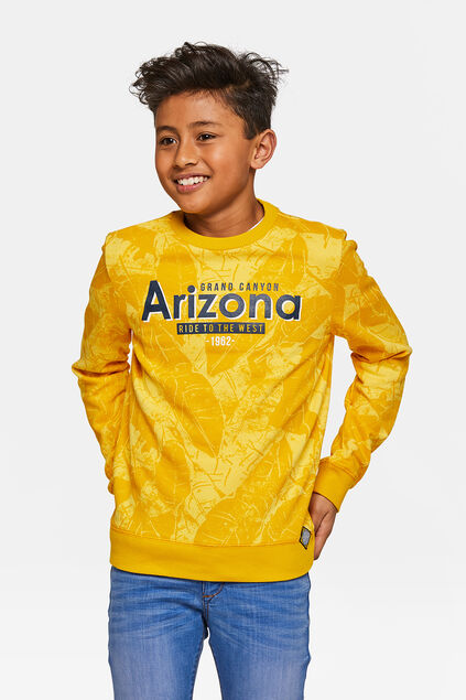 Sweat-shirt Arizona garçon Jaune ocre