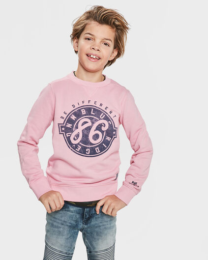 BLUE RIDGE JUNGEN-SWEATSHIRT Rosa